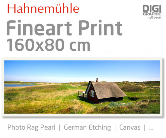 160x80 cm fine art print with 1440x2880 DPI on Hahnemühle fineart papers like Photo Rag, German Etching, Canvas, Premium Photo Glossy