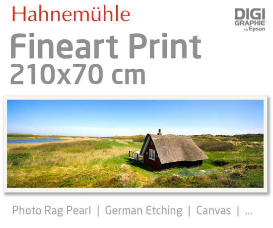 210x70 cm fine art print with 1440x2880 DPI on Hahnemühle fineart papers like Photo Rag, German Etching, Canvas, Premium Photo Glossy