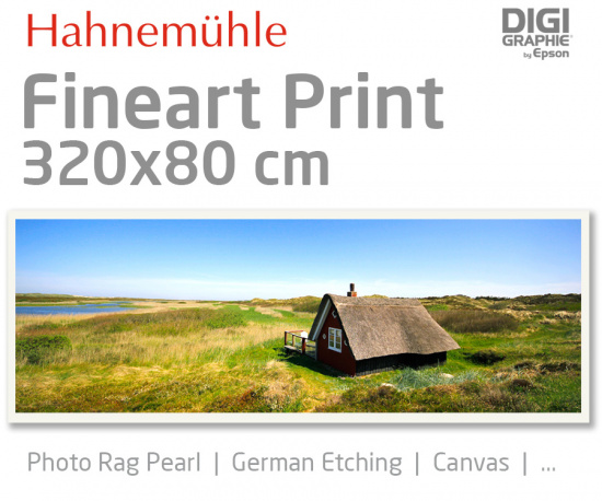320x80 cm fine art print with 1440x2880 DPI on Hahnemühle fineart papers like Photo Rag, German Etching, Canvas, Premium Photo Glossy