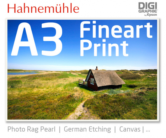 DIN A3 fineart print with 1440x2880 DPI on different Hahnemühle and Epson photo papers like Photo Rag, German Etching, Premium Photo Glossyfine art print with 1440x2880 DPI on Hahnemühle fineart papers like Photo Rag, German Etching, Canvas, Premium Photo