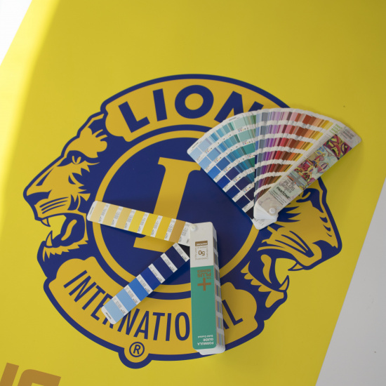 logo in Pantone 287 C and 7406 C on banner