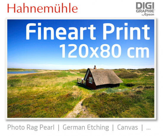 120x80 cm  Fineart Druck mit 1440x2880 DPI auf Hahnemühle Fineart-Papieren wie Photo Rag, German Etching, Canvas, Premium Photo Glossy