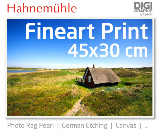 45x30 cm fineart print with 1440x2880 DPI on different Hahnemühle and Epson photo papers like Photo Rag, German Etching, Premium Photo Glossyfine art print with 1440x2880 DPI on Hahnemühle fineart papers like Photo Rag, German Etching, Canvas, Premium Pho