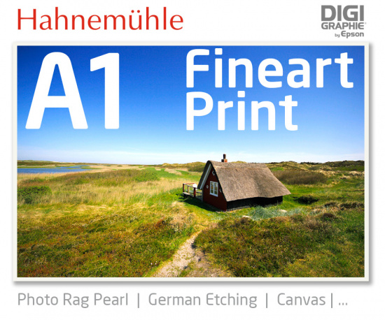 DIN A1  fineart print with 1440x2880 DPI on different Hahnemühle and Epson photo papers like Photo Rag, German Etching, Premium Photo Glossyfine art print with 1440x2880 DPI on Hahnemühle fineart papers like Photo Rag, German Etching, Canvas, Premium Phot