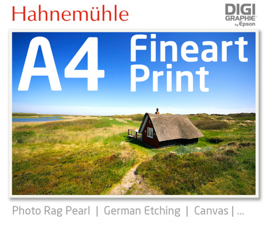 DIN A4  Fineart Druck mit 1440x2880 DPI auf Hahnemühle Fineart-Papieren wie Photo Rag, German Etching, Canvas, Premium Photo Glossy